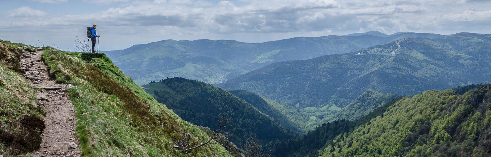 Go Hike